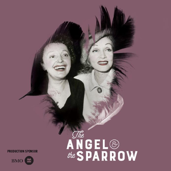angeland_sparrow.jpg